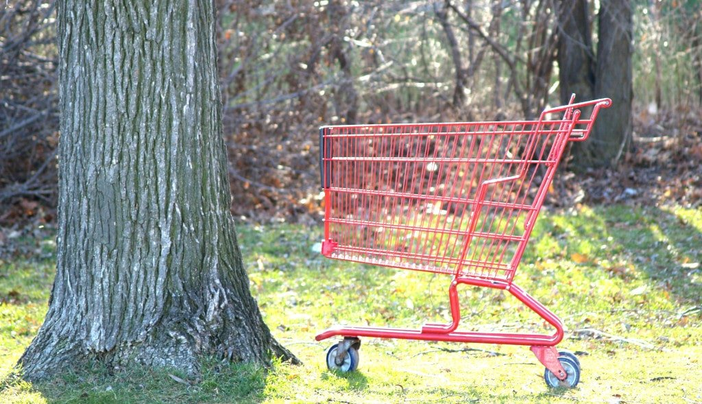 Shopping cart obstacle